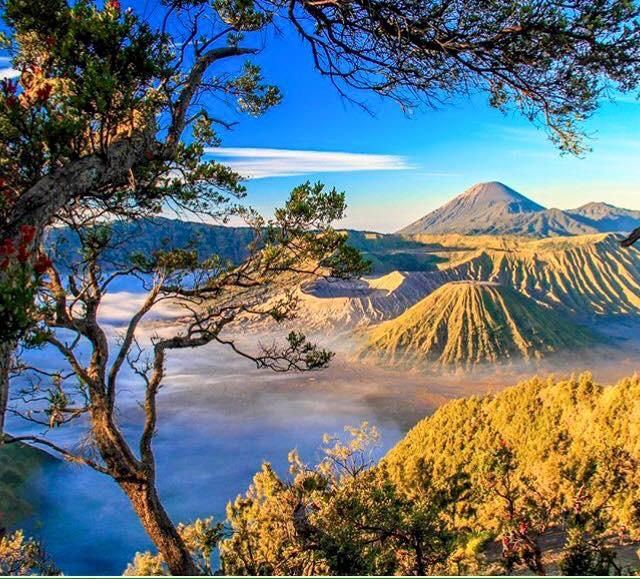 Monte Bromo - Vulcano - Java