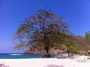 Indonesia - Lombok -