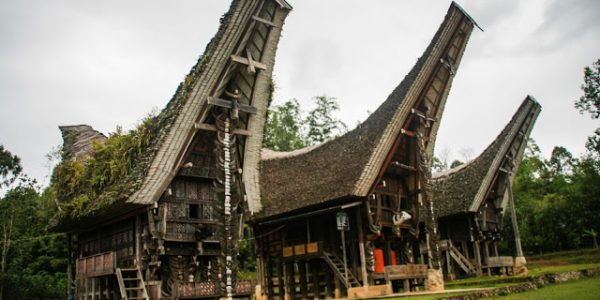 61S- Le case Toraja
