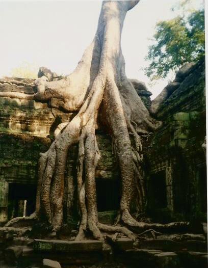 Cambogia - Angkor Wat
