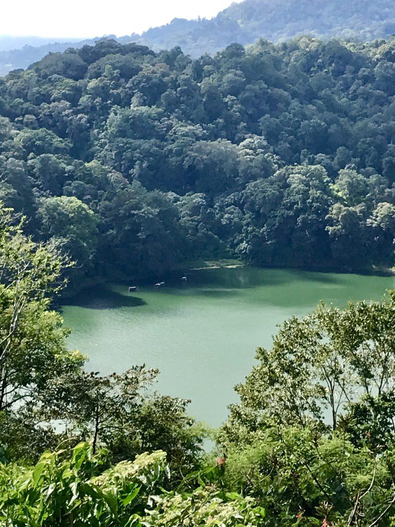 bali - natura - lago